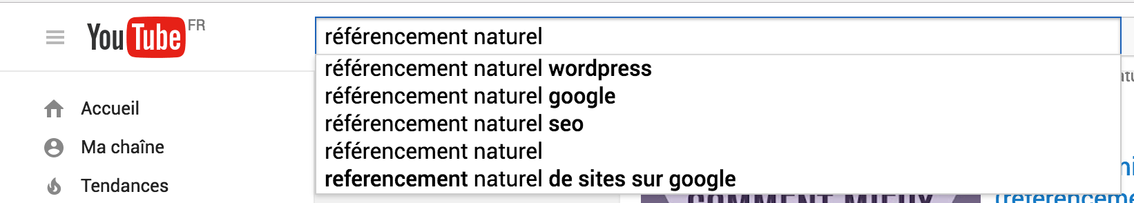 suggestions de recherche youtube